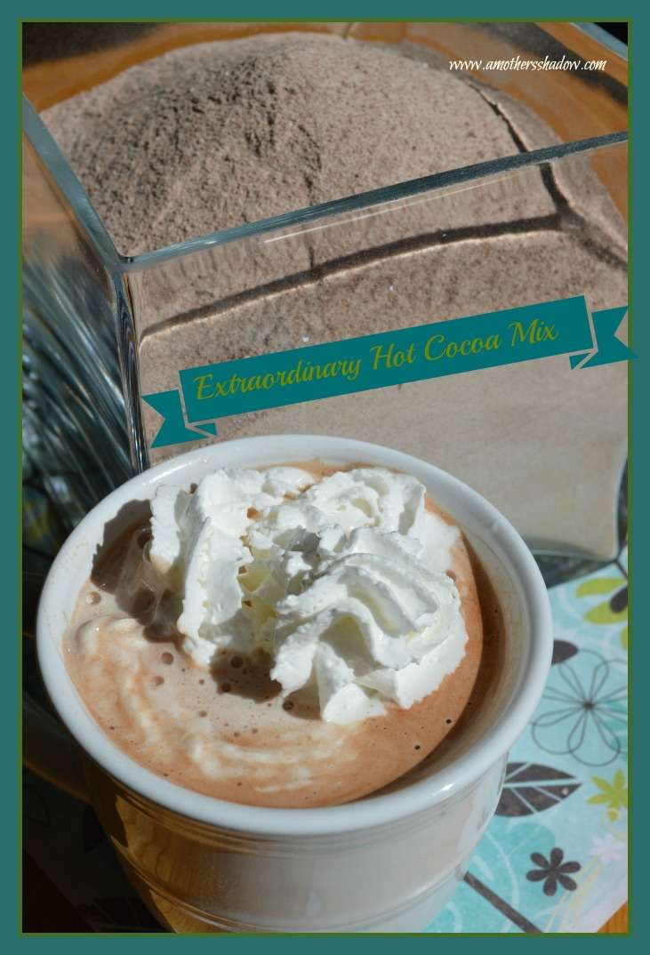 Extraordinary Instant Hot Cocoa Mix