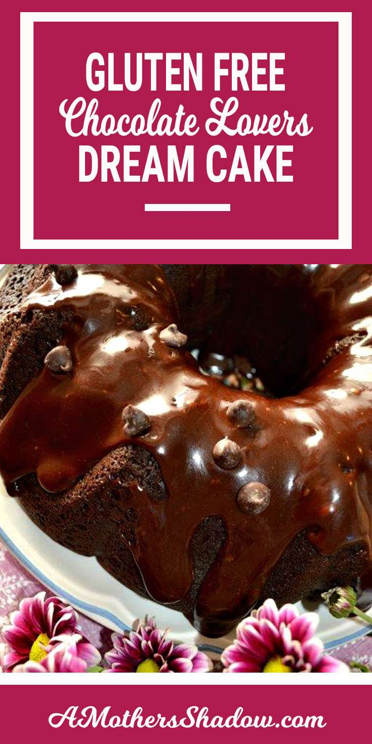 Best Gluten Free Chocolate Lovers Dream Cake