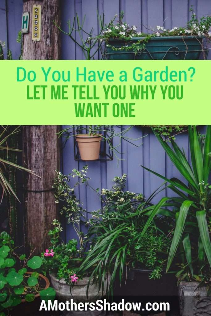 I'll Tell You Why You Want a garden
